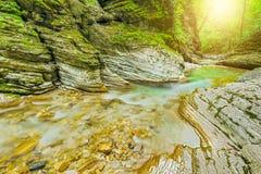 小河用纯净的水 免版税库存图片