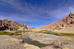 小河的美丽的景色在充分山的豪华的vege之间 免版税库存图片
