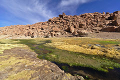 小河的美丽的景色在充分山的豪华的vege之间 免版税库存照片