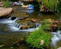 小河通过森林公园 免版税库存照片