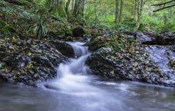 小河水,达鲁瓦尔,克罗地亚 免版税库存照片