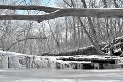 冻小河 库存图片