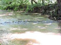 小河 库存图片