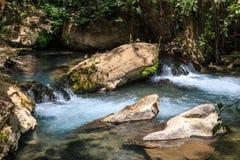 小河Bahias (Hermon),国家储备,以色列 戈兰高地 库存图片
