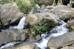 小河yuanyangxi (鸳鸯小河) 库存照片