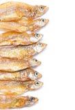 小油煎的鱼。 免版税图库摄影