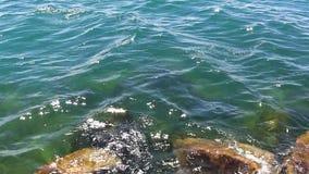 小波浪和被淹没的岩石密歇根湖 股票录像