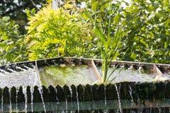 小测流堰瀑布在一个公园 免版税库存照片