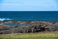 小海浪在与鹈鹕的岩石碰撞在背景中 免版税库存照片