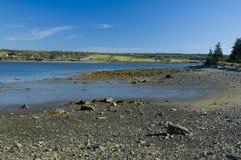 小海湾gilberts 图库摄影