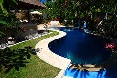 小游泳池在热带树荫下 库存图片