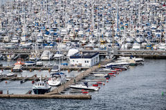 小游艇船坞在奥斯陆 免版税库存图片