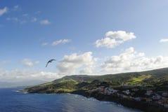 小游艇船坞在撒丁岛 免版税库存照片