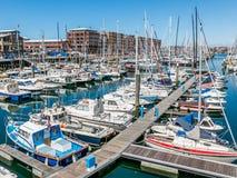 小游艇船坞斯海弗宁恩在海牙,荷兰 免版税图库摄影