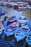 小游艇船坞重创在索伦托,意大利附近 图库摄影