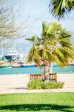 小游艇船坞saaidia港口和波浪和岩石 库存图片