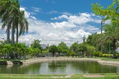 小湖在公园背景中 免版税图库摄影