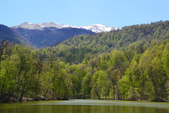小湖在迪利然,亚美尼亚 库存照片