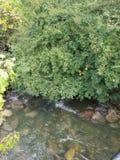 小湾河床 库存图片