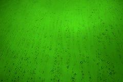 小滴新鲜的绿色水 免版税库存图片