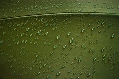 小滴织品水 库存图片