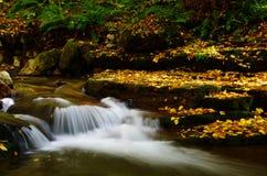 小瀑布和秋天叶子 免版税库存照片
