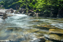 小瀑布在国家公园 免版税库存照片
