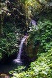 小瀑布在帕洛贝尔德国家公园 免版税库存图片