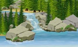 小瀑布在森林湖,大石头,云杉的树