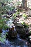 小瀑布在森林 库存图片