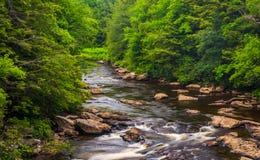 小瀑布在从一座桥梁的黑尿病河在黑尿病Fal 免版税库存图片