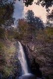 小瀑布在黑森林,德国里 库存图片
