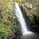 小瀑布在黑森林,德国里 图库摄影