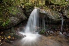 小瀑布在黑森林,德国里 免版税库存图片