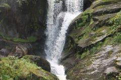小瀑布在黑森林 库存图片