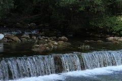 小瀑布在Plitvice国家公园 库存图片