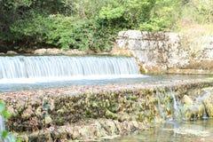 小瀑布在Plitvice国家公园 库存照片