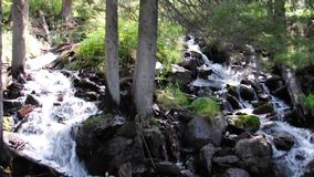 小瀑布小瀑布在河Boci的,流动从山 股票视频