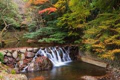 小瀑布水在Minoh瀑布附近的秋天 免版税库存图片