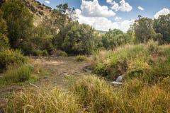 小瀑布水平的射击反弹国家公园 库存照片