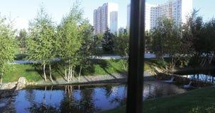 小瀑布池塘在公园 股票录像