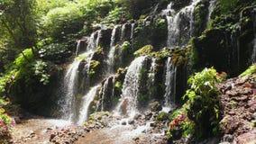 小瀑布瀑布在热带森林巴厘岛,印度尼西亚里 鸟瞰图 股票视频