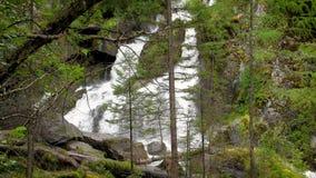 小瀑布瀑布慢动作 水小河在山、巨大的冰砾和下落的树中的 干净,清楚 股票视频