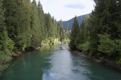 小瀑布的Wenatchee河 免版税库存图片