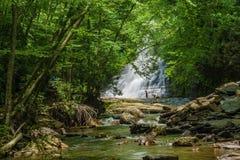 小瀑布秋天基地的,贾尔斯县,弗吉尼亚,美国游泳者 库存照片