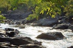 小瀑布秋天,树,岩石 免版税库存图片