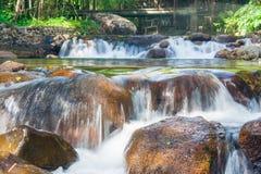 小瀑布美好的风景视图在有流经石和绿色自然在backgrou的水小河的河 免版税库存照片