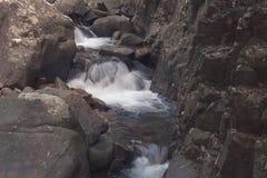 小瀑布美好的风景视图在有流经石头的水小河的河位于雨林 图库摄影