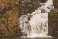 小瀑布美好的风景视图在有流经石头的水小河的河位于雨林 库存图片