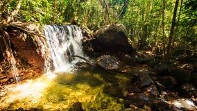 小瀑布落入透明池塘在热带森林里 影视素材